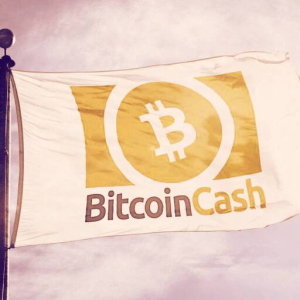 Bitcoin Cash To Undergo Hard Fork Tomorrow—Here's How to Prepare