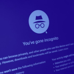 Incognito now lets you make private transactions with Zilliqa and BNB