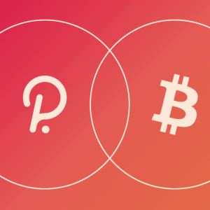 Tokenized Bitcoin is Coming to Polkadot in Q1 2021