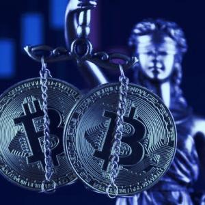 Bitcoiners push for mass privacy on Satoshi's birthday