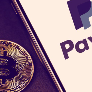 PayPal CEO Explains Why He Believes in Bitcoin for Payments