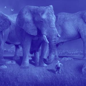 Jack Dorsey eyes Africa's Bitcoin market