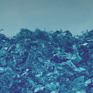 "Argentina to reward waste management with new ""wastecoin"" called JellyCoin"