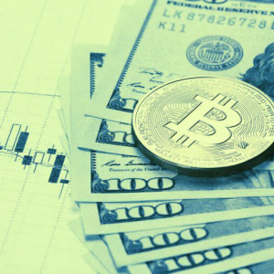 Bitcoin fees hit highest price in a month as price rallies