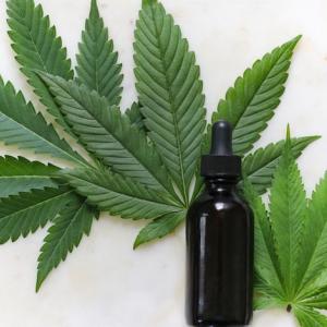Uruguay Can usará la Blockchain de Aeternity para hacer seguimiento a la producción de cannabis