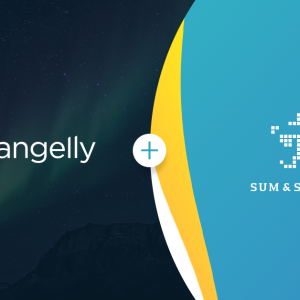 Changelly Partners Sum&Substance: Bringing the Smoothest User Experience through the Best Market Practices
