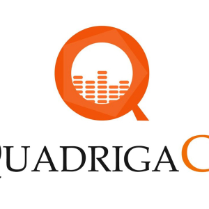 Quadriga Has Only One Option: Bankruptcy, Auditor Says
