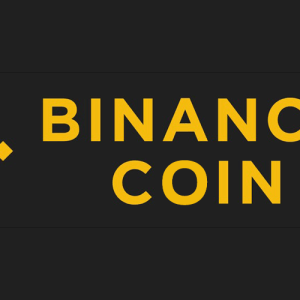 Binance Coin (BNB) Price Climb Continues, Hits New All-Time High