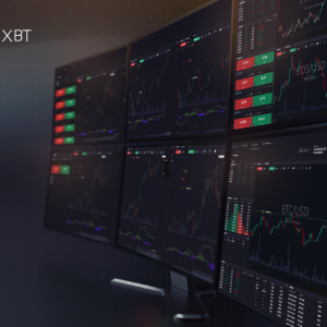 Analyst Research: A Comparative Study Between PrimeXBT and BitMEX
