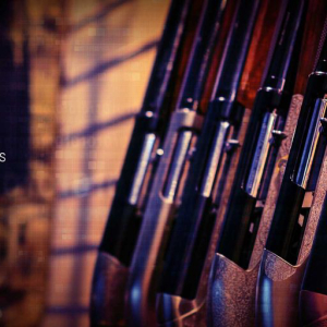 Prominent Firearm Auction Site Shoots For Stablecoin