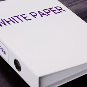 White Paper Writer Speaks Out