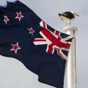New Zealand Digital Asset Exchange Dasset Adds Bitcoin SV Support