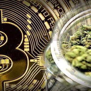 Crypto News