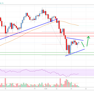 Bitcoin Price Analysis: BTC Eyes Strong Gains Above $14K