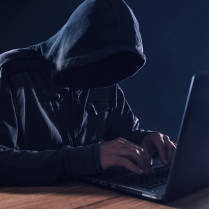 Cyberattack in Florida Sees the Hackers Rewarded