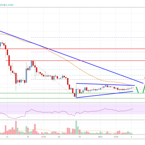 Ripple Price Analysis: Holding Key Support For Fresh Increase
