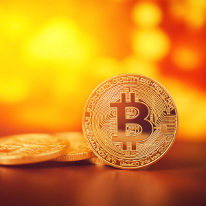 Bitcoin Price Inches Back from Year Low – But Why Did the Drop Happen in the First Place?