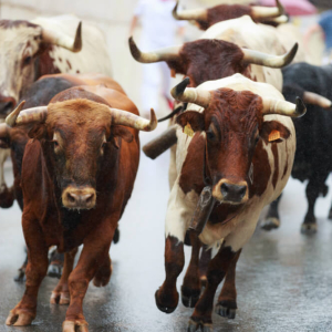Bitcoin: Why October Favors a Bull Run
