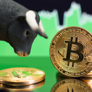 Crypto Analyst: Break of Current Bitcoin Resistance Will Commence Bull Run