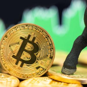 Crypto Analyst: Recent Bitcoin Price Struggle Similar to 2017 Run
