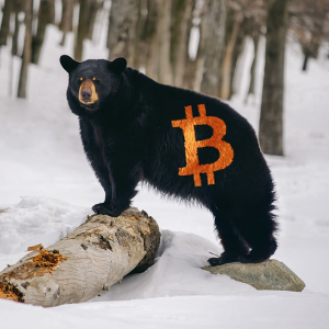 Tom Lee Owns his Bad Consensus Bitcoin Prediction