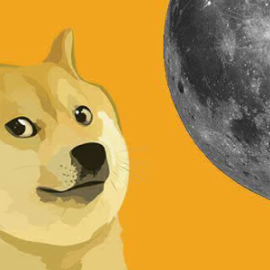 TikTok Dogecoin Pump Purveyors Experience Their First Crypto Dump