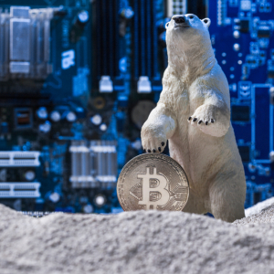 Reddit Founder Talks Crypto Winter and Ongoing Innovation in the Space