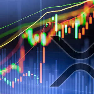 Crypto Markets Hit 11 Month High as XRP Gets a Partnership Boost