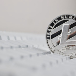 Litecoin Led Last Week's Crypto Market Surge, Will LTC Lead This Week's Drop?