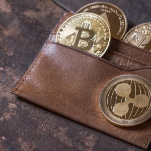 Big Day for Bitcoin Acceptance: Crypto Welcomed at Multi-Billion-Dollar Pair of Retailers