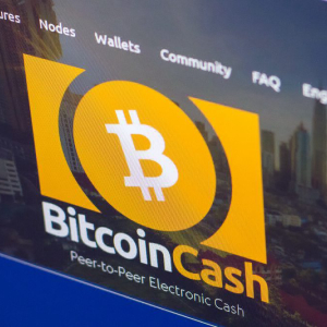 ShapeShift CEO: Bitcoin Cash is Not Bitcoin as it Failed to Gain Majority Support