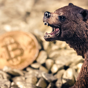 "Bitcoin Just Signaled ""Sell"" And It's Vulnerable to a Massive Correction"