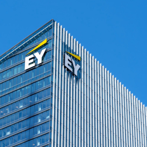 EY launches blockchain solution for governments to help them improve their financial management