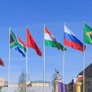 BRICS member nations propose creating a cryptocurrency for payment settlements