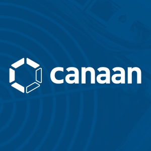 Bitcoin mining hardware maker Canaan's stock price surges more than 80%