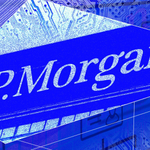 JPMorgan is actively exploring digital asset custody platforms, and looking for help from crypto native firms