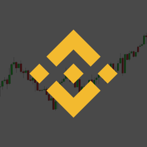 Binance Coin Price Doubled in Price in the Past Month!