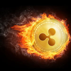 Ripple Price Down Almost 20% – What Goes up Must Come Down