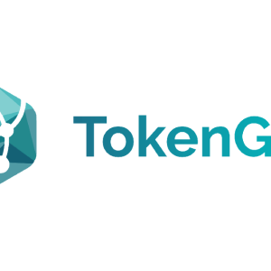 TokenGet STO Platform Is Quickly Becoming a Market Leader