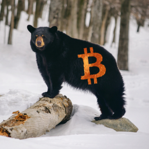 Bearish Bitcoin Price Pressure Will Resume According to These 3 Predictions