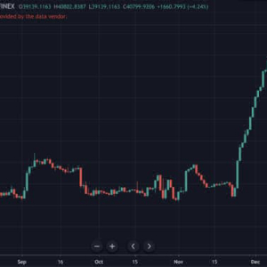 Bitcoin Longs Reach All Time High But Price Still Falling Somehow