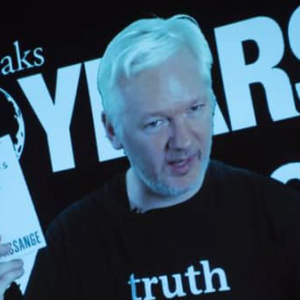 Did Wikileaks Destroy Bitcoin as Satoshi Nakamoto Predicted?