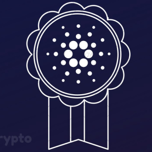 Charles Hoskinson: Cardano is on its Way to Becoming the Best Cryptocurrency in the World