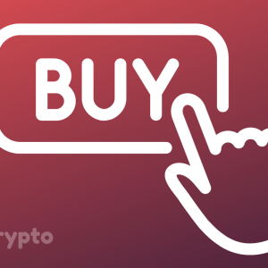 New Crypto Investors Are Buying A Lot of BTC As Demand or Bitcoin Increases