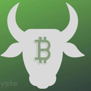 Bulls Take Market Head-On, Bitcoin Price Skyrockets Over $9,000… Again