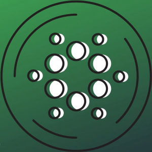Cardano's Network Growth Supports Bullish Trend, But ADA Must Prevail Possible Selling Pressure