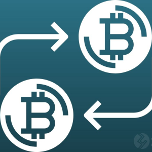 Dissecting the possibilities of Bitcoin becoming a U.S national currency